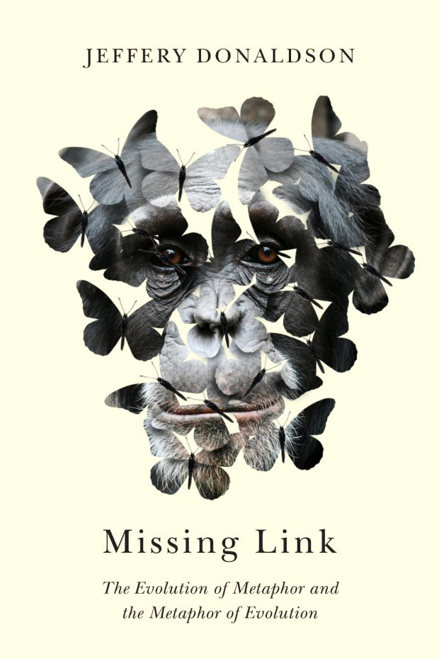 missing-link