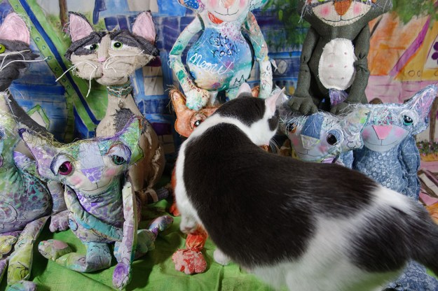 Wally, the real life cat, inspects the dolls as they pose for their group photo.