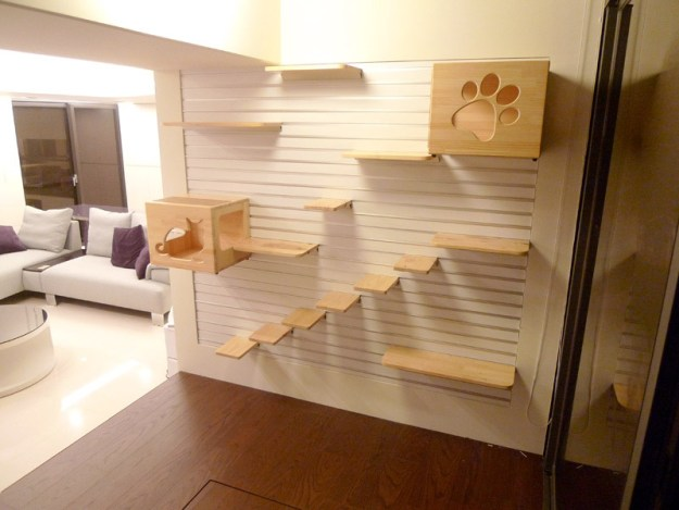 Wall mounted playground for cats in a ultra modern home setting.
