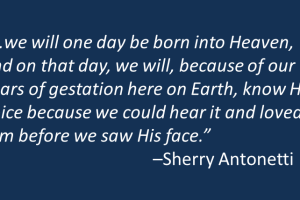 On the Years of Gestation on Earth