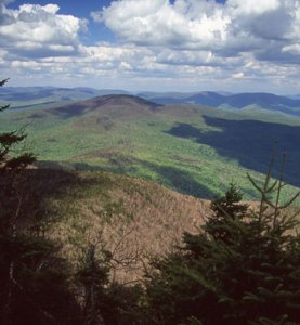 Slide Mountain Catskills Hike
