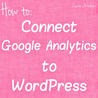 How to connect google analytics to Wordpress square