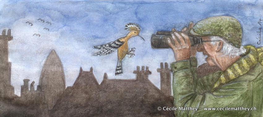Illustration pour « The birdwatcher » de Jocelyn Koehler (webzine « The Future Fire, 2014)