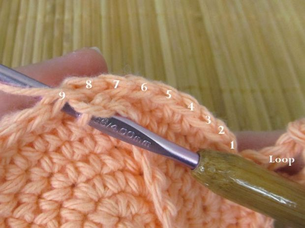 Step 2: Slip stitch into the 9th single crochet from the top of the opposite side.