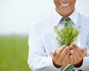 Businessman showing green plant