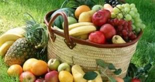 El fruto del espíritu santo - Estudios Biblicos