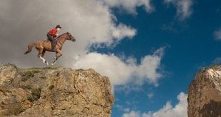 Chistes Cristianos - El caballo del pastor