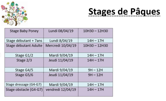 stage2019-1