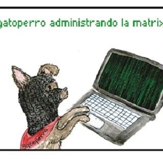 El gato perro administrando la matrix