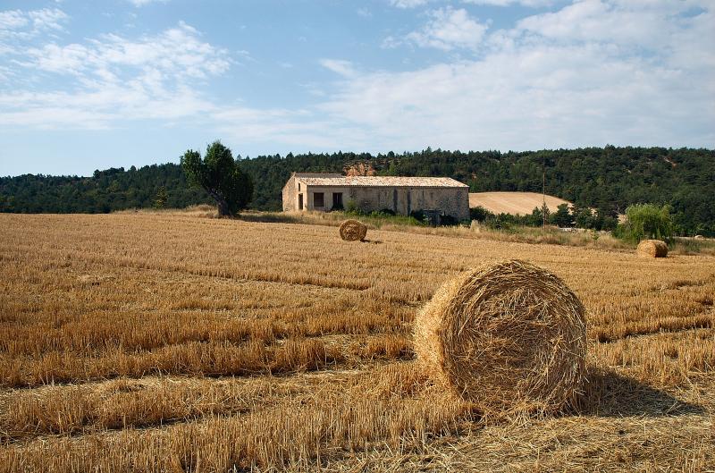 Civiltà contadina e sovversione progressista