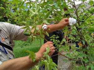 Turismo Responsable y artesania textil en Guatemala (8)