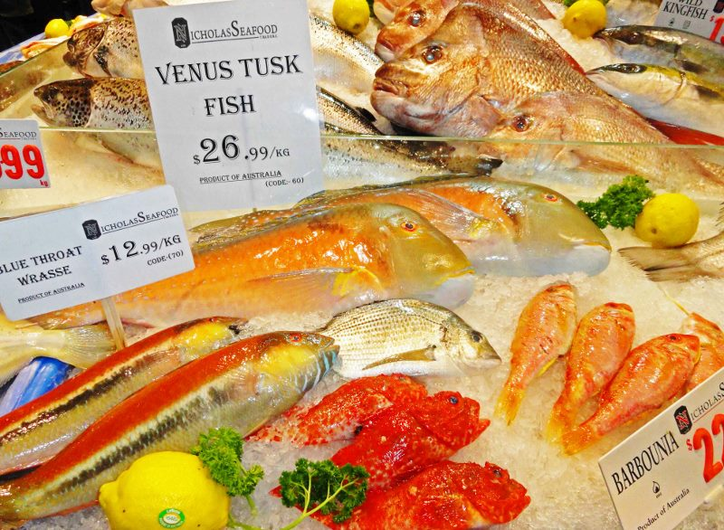 tusk fish at sydney fish marrket