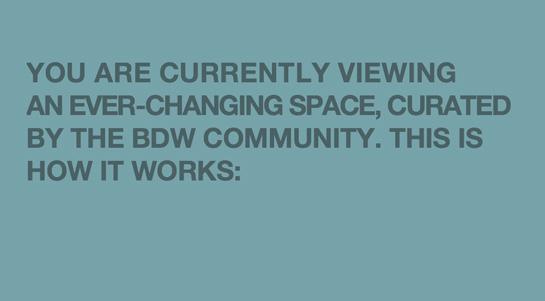 bdw_workshop.jpg