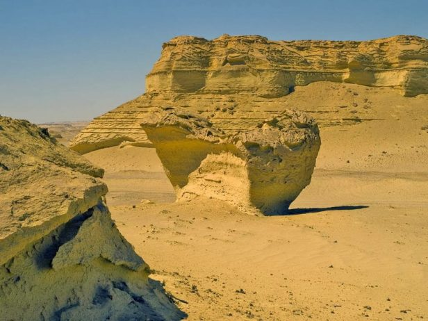 "Wadi Al-Hitan ""Whale Valley"" Egypt"