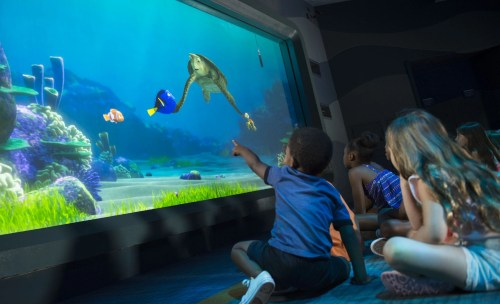Turtle Talk with Crush at The Seas with Nemo & Friends pavilion at Epcot. (David Roark, photographer)