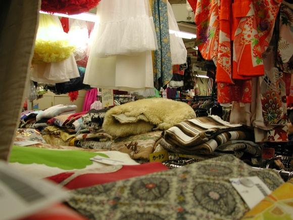 thrift-store-interior.jpg