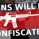 Gun_Confiscation