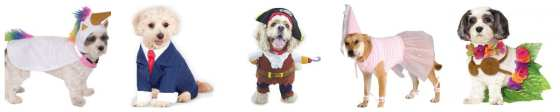 50 Halloween Pet Costumes under $20 via Amazon Prime - Charleston Crafted