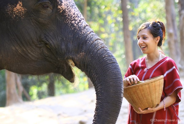Patara Volunteer with Elephants Thailand