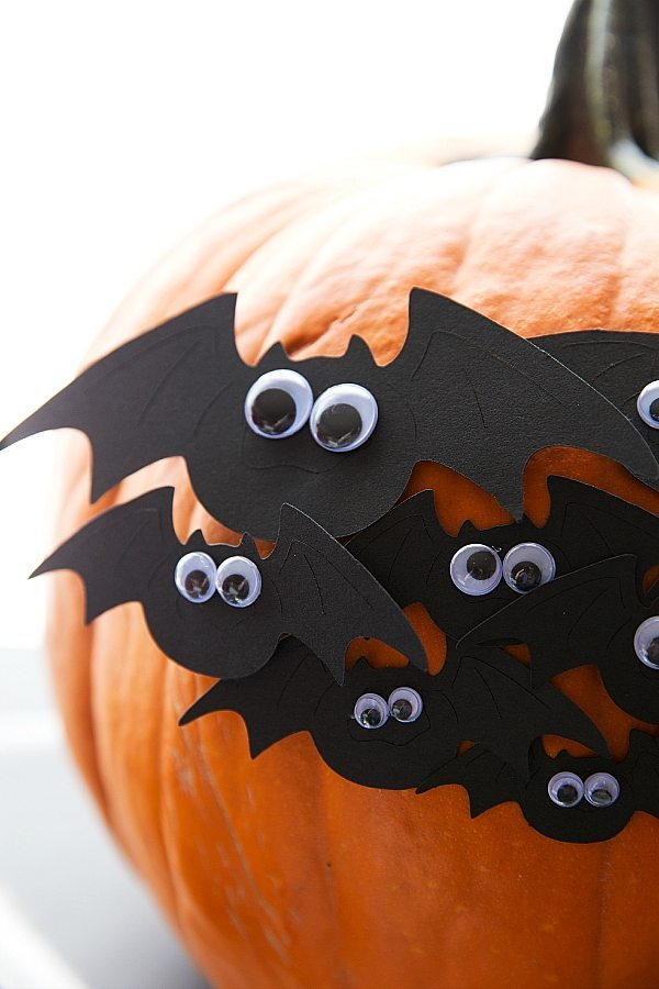 The Ultimate Bat Halloween Party!
