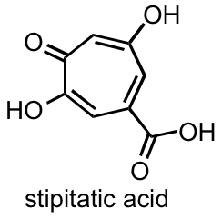 stipitatic acid.png