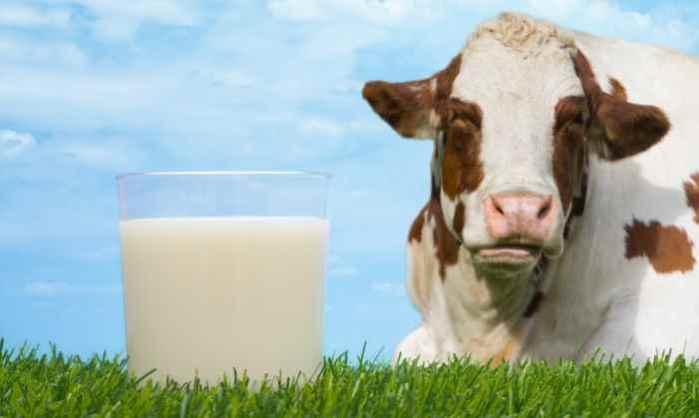 Γάλα: οι τάσεις και τα νέα προϊόντα