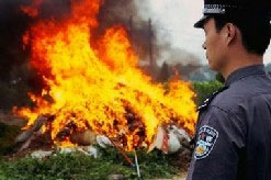 China burning weed