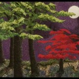 Maple in the MOonlight-thumbnail