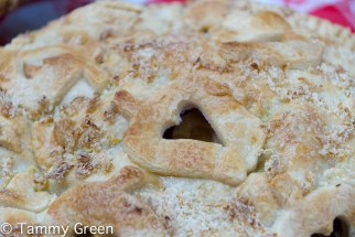 Maureen's Bagged Apple Pie