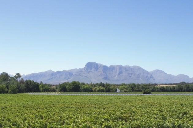 south-africa-167