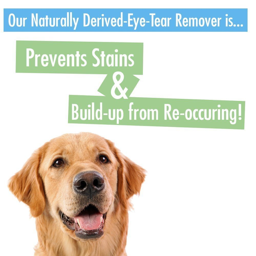 Shapely Rapport Tear Stain Remover Dogs Rapport Tear Stain Remover Dogs Chihuahua Kingdom Dog Tear Stains Antibiotic Dog Tear Stains Red bark post Dog Tear Stains