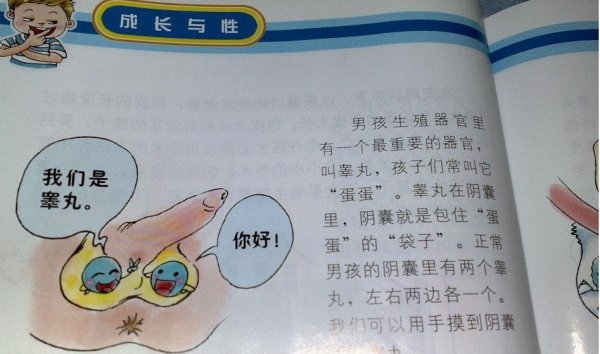 Primary school sex textbook teaches about testicles.