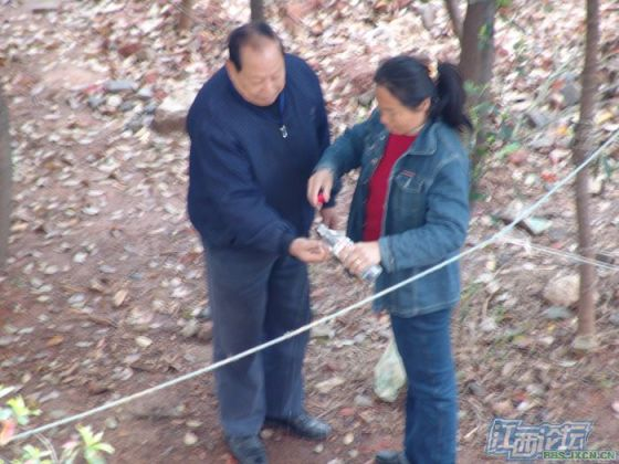 chinese-elderly-in-woods-doing-naughty-things-nanchang-13