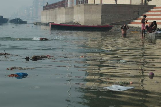 An Indian swims in the river Ganges amongst the garbage and rotting corpses.