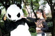 panda-shorts-chinese-girls-shanghai-10