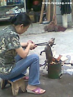 A Chinese woman roasting a small puppy over an open fire on the street.