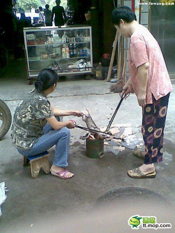 Chinese women roasting a small puppy over an open fire.