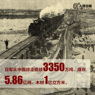 """The Japanese army plundered over 3.35 million tons of steel, 586 million tons of coal, and 100 million cubic meters of timber."""