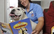 6 ideas for Planning the Paw-fect Walt Disney World Vacation during the Dog Days of Summer