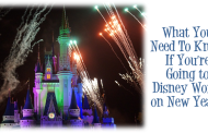 What You Need To Know If You're Going to Disney World on New Year's
