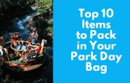 Top 10 items to pack in your Disney Parks Day Bag