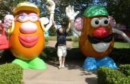 Top 4 Disney World Resort Activities