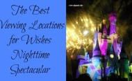 The Best Viewing Locations for Wishes Nighttime Spectacular