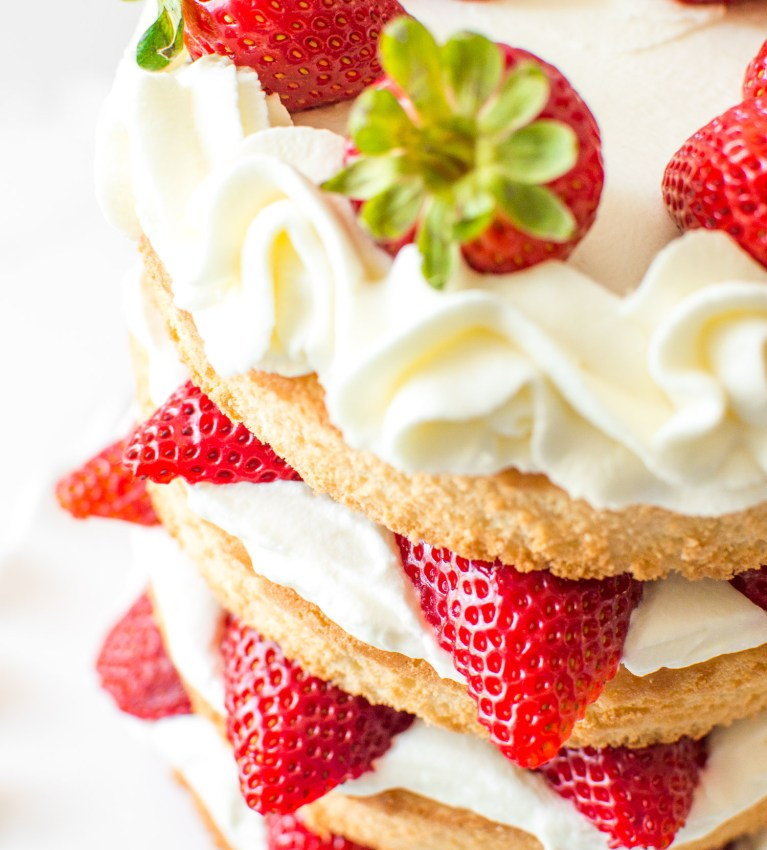 Skyscraper Strawberry Shortcake-5