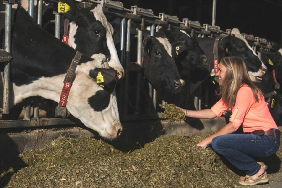 dairy nutritionist