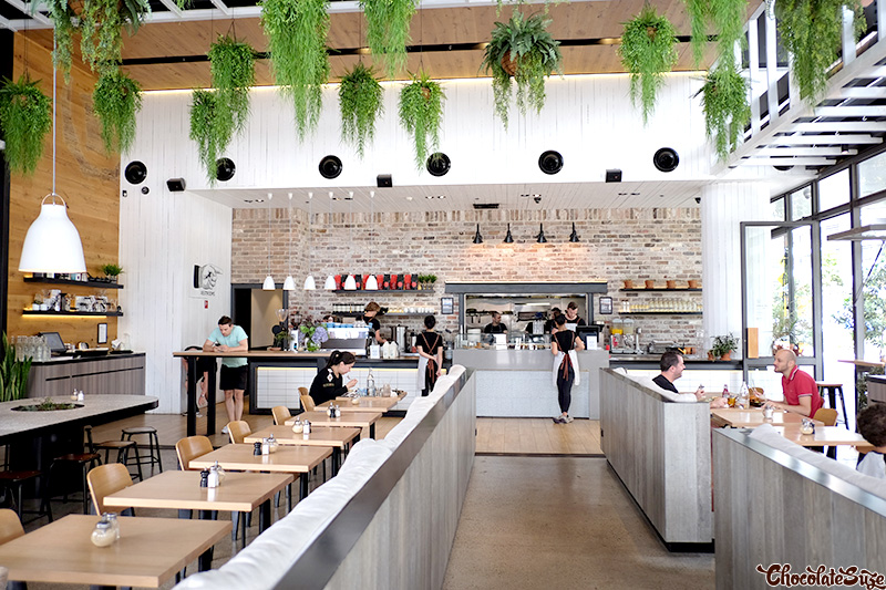 Barista and Cook, Waterloo