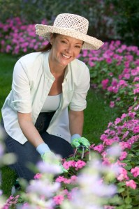 Woman tending a garden