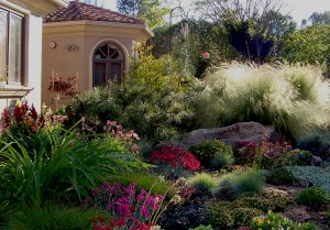 Lots of grasses, a large boulder and colorful perennials give this scene a naturalistic look.