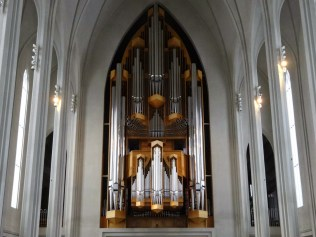 The biggest organ I've ever seen