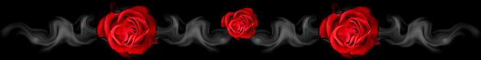 barra_titolo_rose2